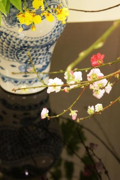 2014春花展 ハナモモ