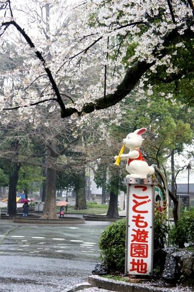 2014上野花見 こども遊園地のうめ様1