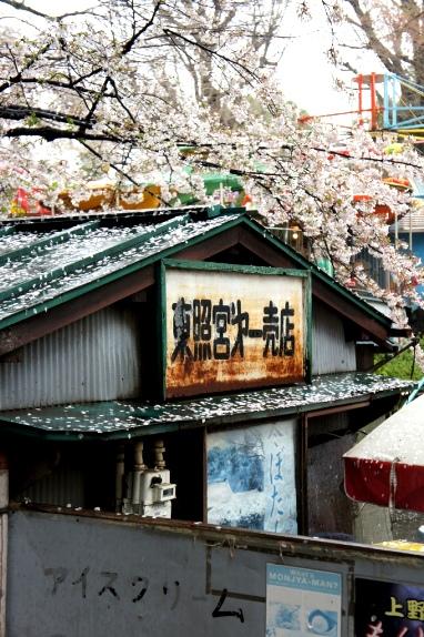 2014上野花見 東照宮第一売店2