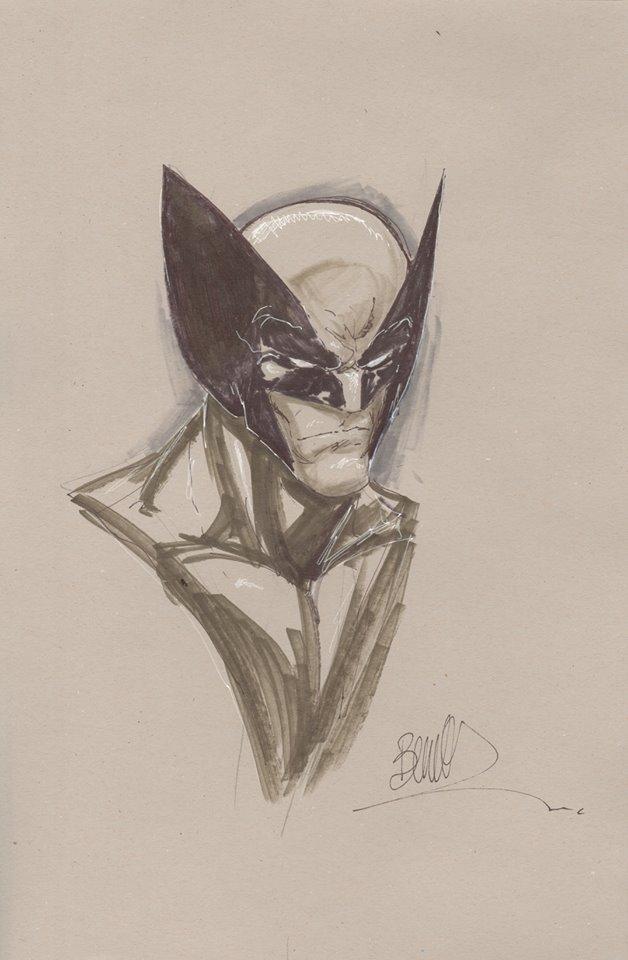 Joe Benitex Wolverine 11x17 grey Headshot