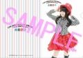 NANA MIZUKI LIVE CIRCUS×CIRCUS+×WINTER FESTA JBOOK特典「クリアファイル」