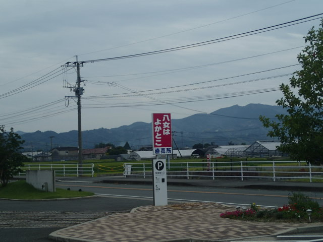 P9180002.jpg