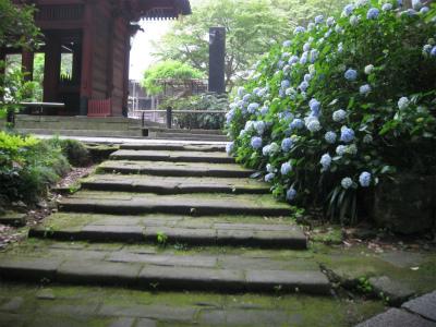 妙本寺②IMG_2302