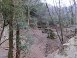 幻の滝の近く