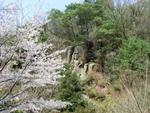 桜と磨崖不動明王