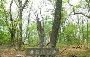 鎌倉山山頂