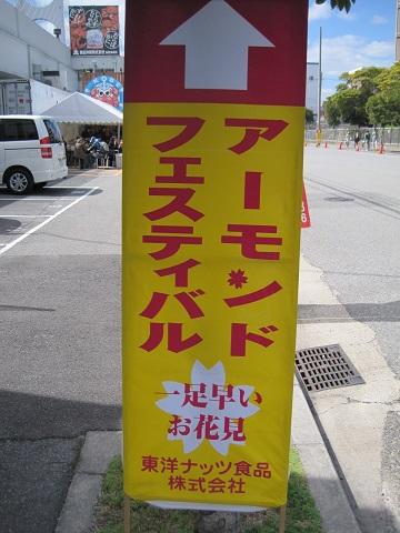 IMG_8632-1 (1)