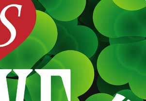 clover Love Logo Design&Card Design