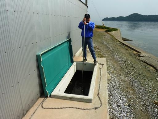 濾過水槽の掃除中