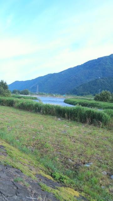 九頭竜川7月6日