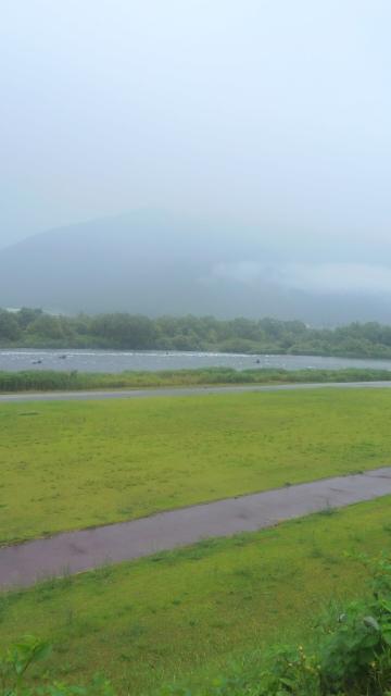7日、雨の九頭竜川