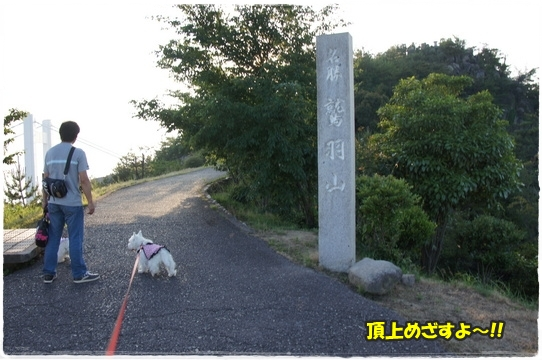 wasyuuzan3