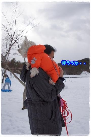 donguri9