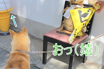 s-sainokawara140704-IMG_2430