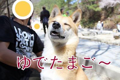 s-sainokawara140704-IMG_2436
