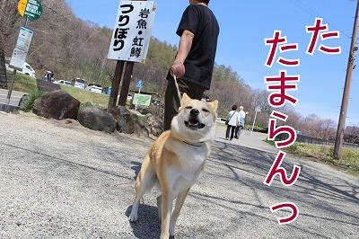 s-sainokawara140704-IMG_2456