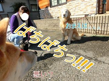s-onaosi140801ーCIMG4331