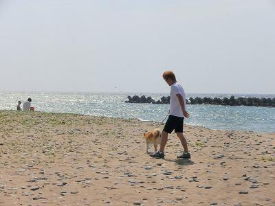 s-dogCIMG2257.jpg