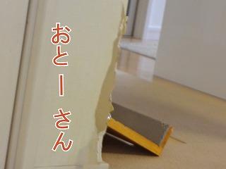 s-hokkeDSC04683.jpg