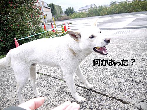 20140307_1040259.jpg
