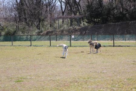 2014-03-10 森のまきばオートキャンプ場 059