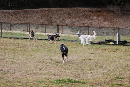 2014-03-10 森のまきばオートキャンプ場 001