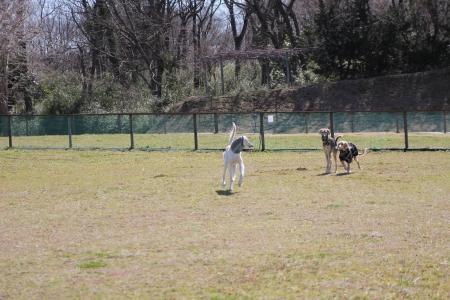 2014-03-10 森のまきばオートキャンプ場 060