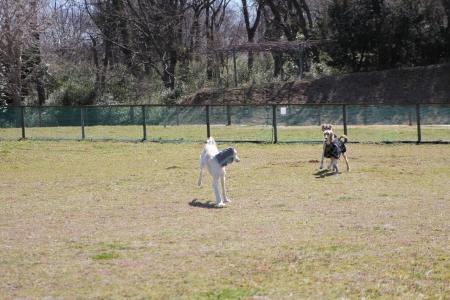 2014-03-10 森のまきばオートキャンプ場 062