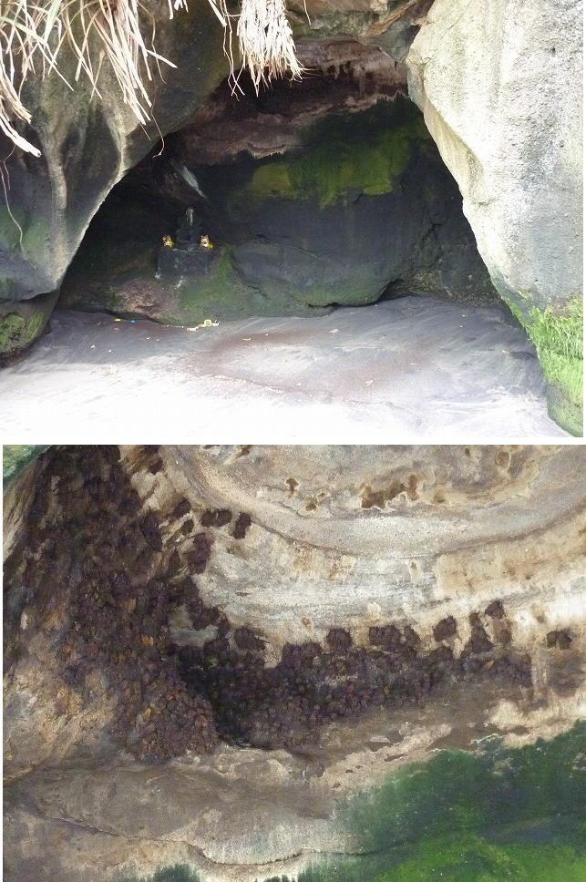 蝙蝠の洞窟ブログサイズ