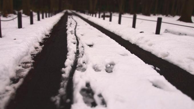 残雪*雪の跡