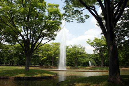 51996_139_fukutoshin.jpg