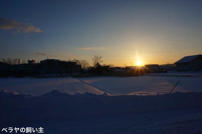BNK_Snowy Day_DSC02685