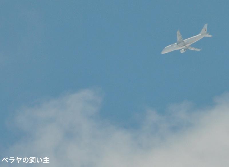 BNK_JAL_DSC_0104.jpg