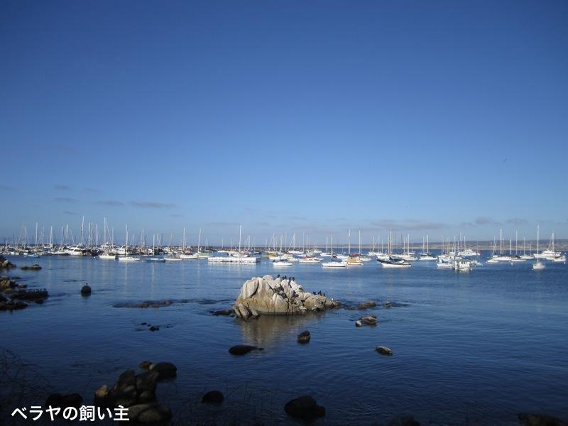 BNK_Monterey_IMG_3904.jpg