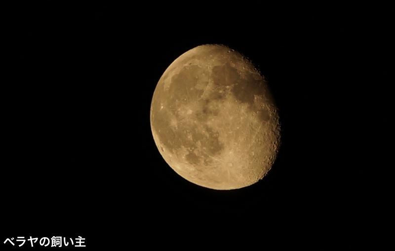 BNK_Moon_DSC06385.jpg