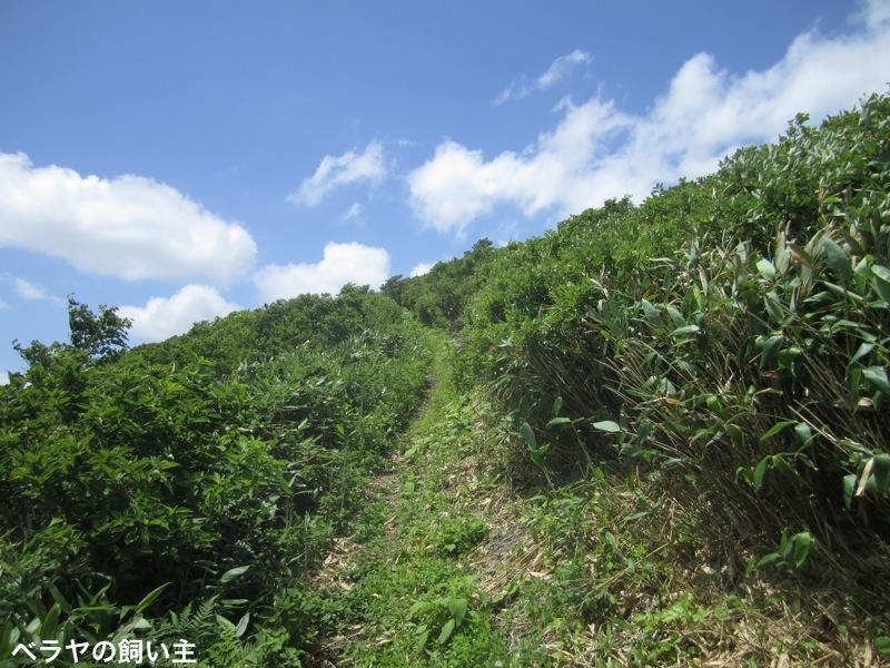 BNK_Tashiro_IMG_1227.jpg