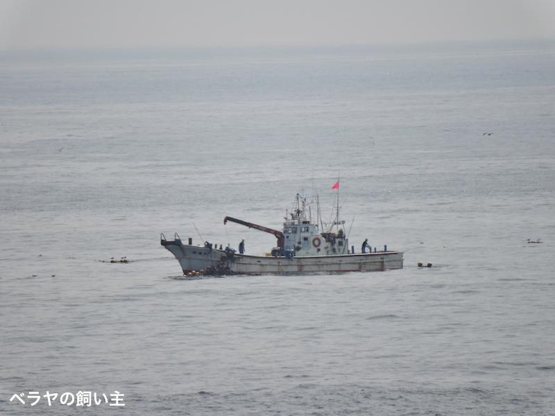 BNK_boat_DSCN1389.jpg