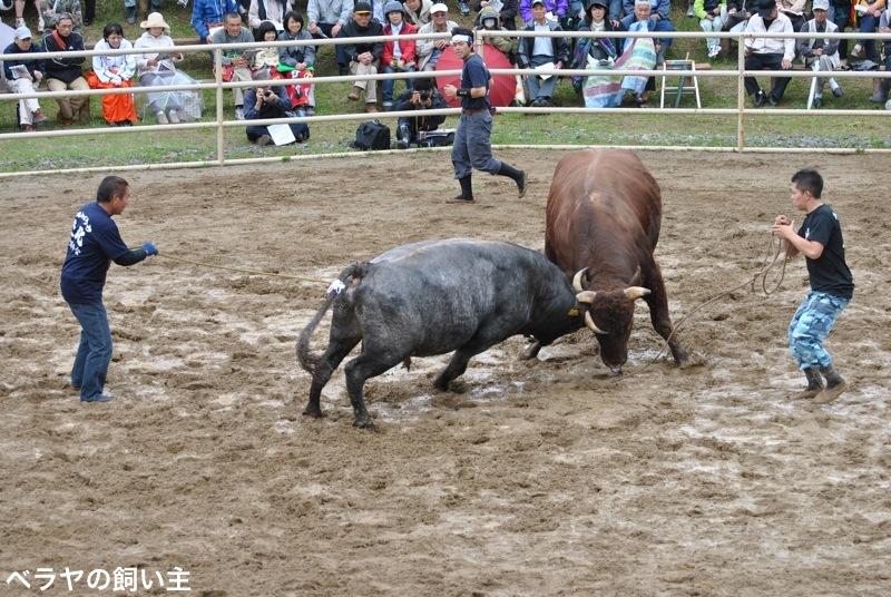 BNK_bullfight_DSC_0040.jpg