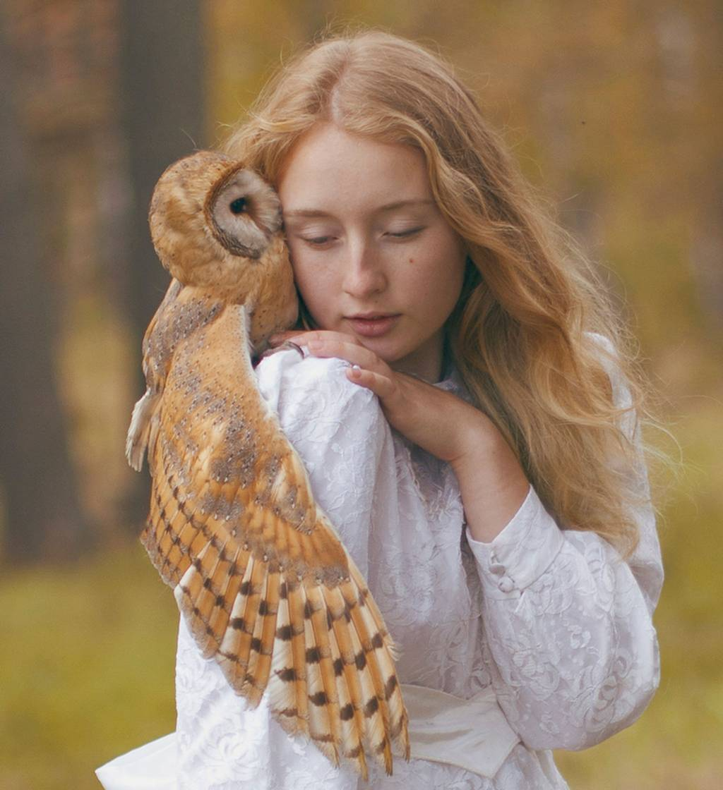 Katerina Plotnikova_北欧_フクロウ