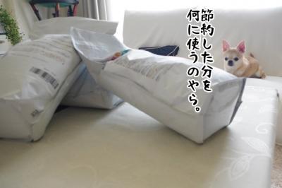 IMGP7467-4.jpg