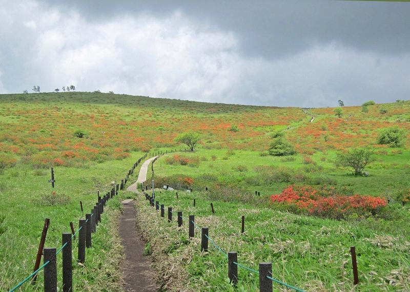 車山湿原の景色その2