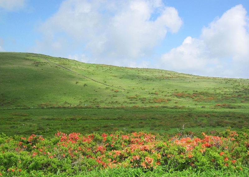 車山湿原の景色その1