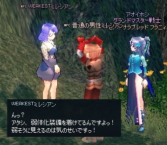 mabinogi_2014_02_13_007.jpg