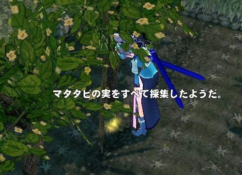 mabinogi_2014_02_15_002.jpg