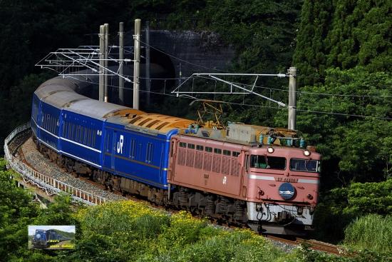 nk502010.jpg