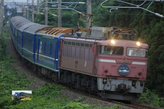 nk512010.jpg