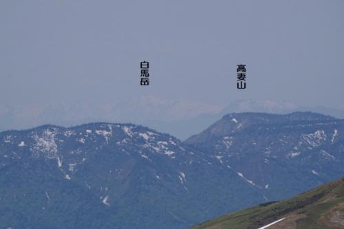 39sennokuratakatumahakuba-sanmei.jpg