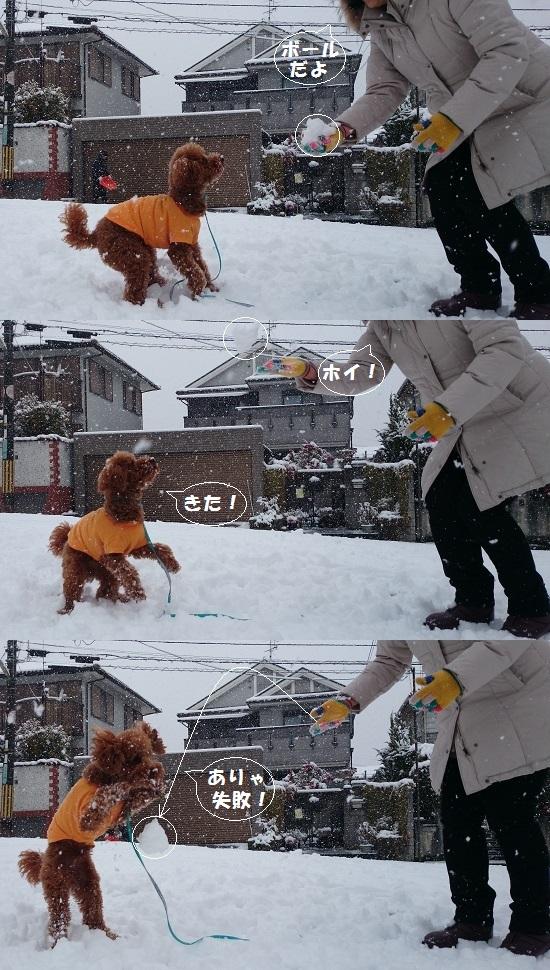 雪ボール遊び