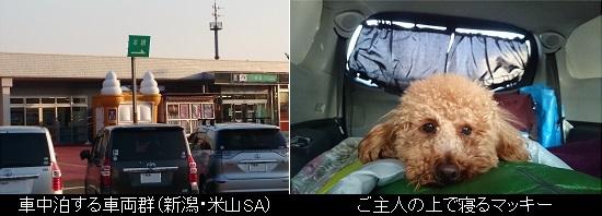 車中泊@米山SA