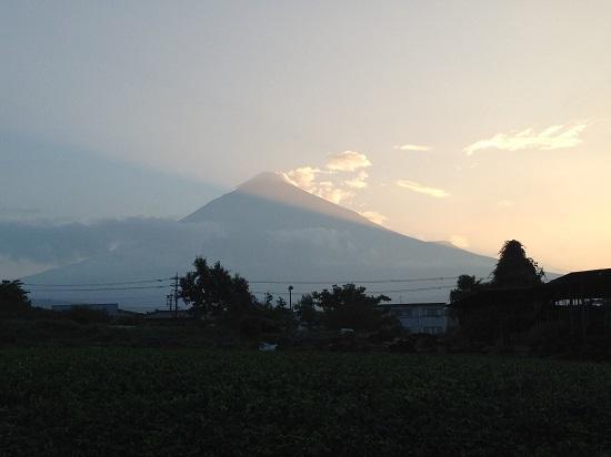 富士朝 (1)